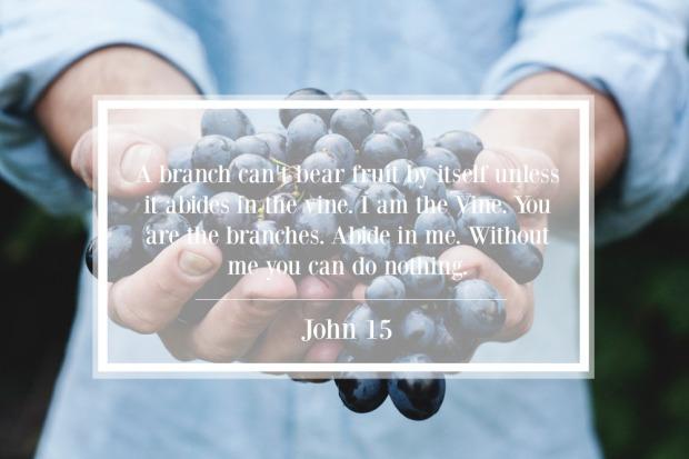John 15 1 2 3 4 5